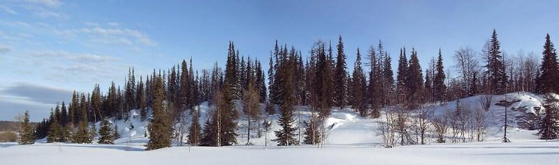фото альбом Приполярный Урал, 02.2006 в долине реки Дурная