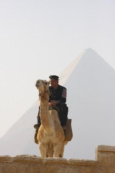фото альбом Египет На страже пирамид