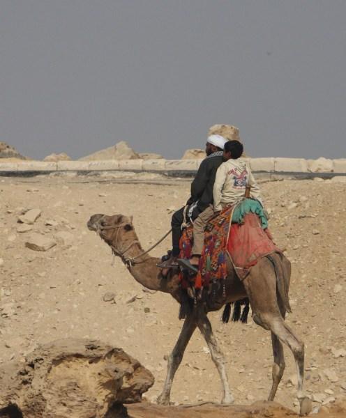 фотографии альбом Египет Сын отец и верблюд