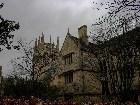 фото - Заброшенный сад - Англия