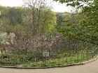 фотографии - Ботанический сад - 2 мая 2006 г. - Киев. Магнолии