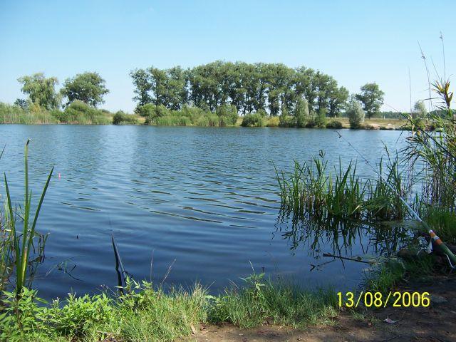 фото альбом Леса, озера - Рыбалка на карпа... озеро близ Бышева 13.08.2006