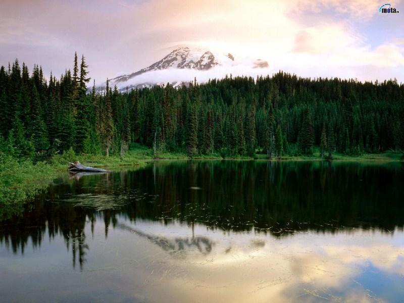 фотографии альбом Природа Красивые большие фотографии природы