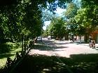 фотографии - Гоголевская - Природа Нежина