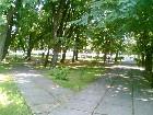 фотографии - парк Гоголя 3 - Природа Нежина