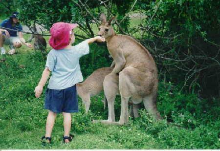 фото альбом В мире животных. Самые прикольные фотки про животных здесь Не хотите ль подкрепиться?