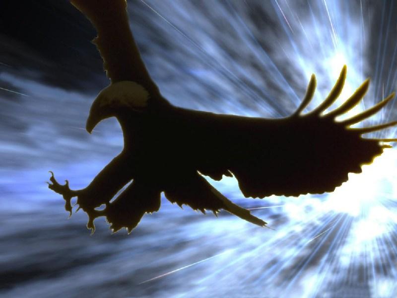 фото альбом Помазание поклонника помазание поклонника