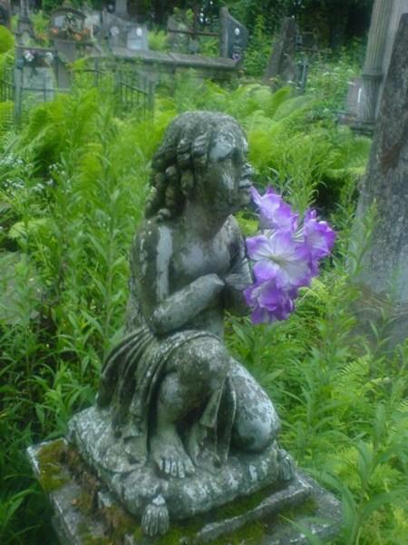 фотографии альбом Украина - Кладбище Лычаковское кладбище во Львове