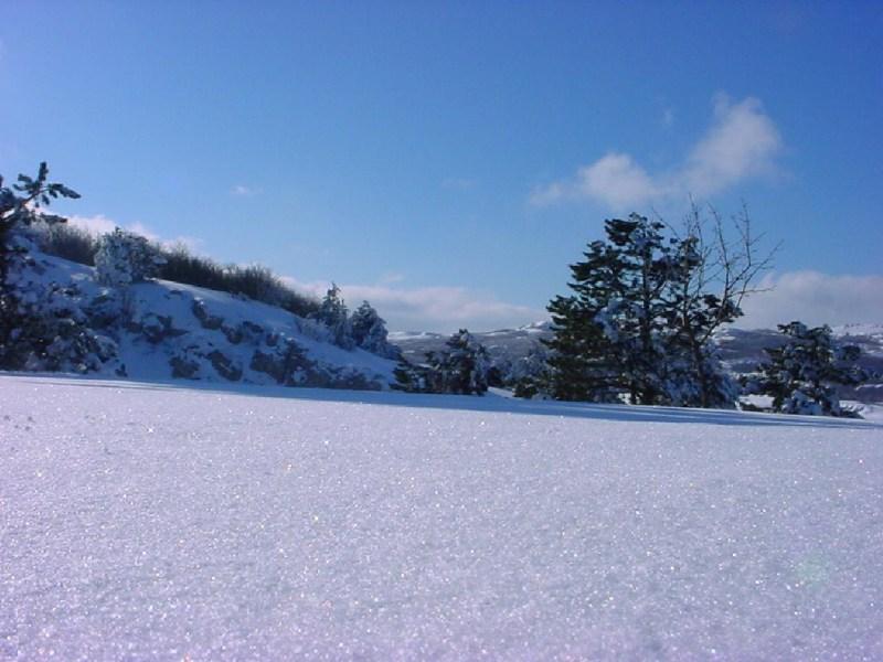 фото альбом Snow Wallpapers Wallpapers