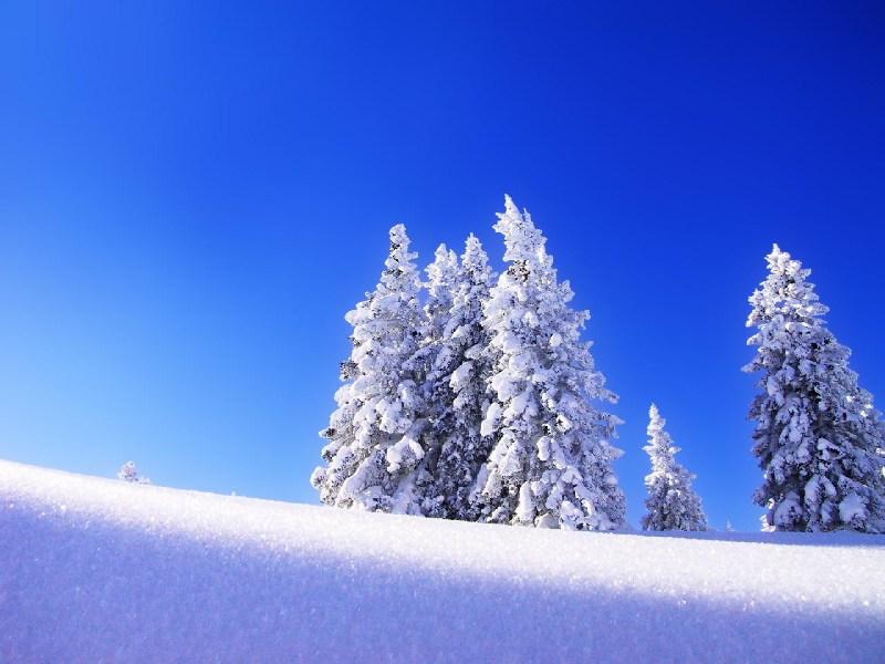 фотографии альбом Snow Wallpapers Wallpapers
