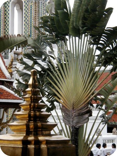 фото альбом РАЗНОЦВЕТЬЕ БАНГКОКА Внутри Большого королевского дворца