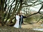 фото - IMG_4521_rmssp.jpg - Свадебная фотография