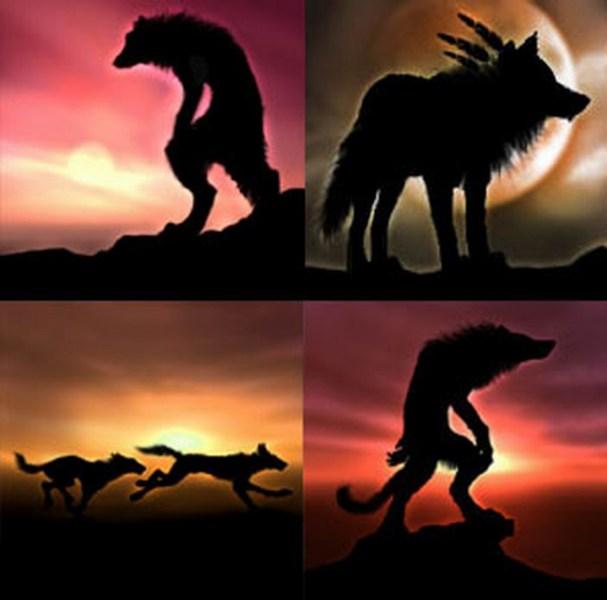 фото альбом Оборотни ВСЕ, что у меня есть, кроме http://www.goldenwolfen.com