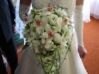 фото - Свадьба: Тоня и Паша - Праздники - Свадьба