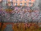 фото - ...осень... - ...у подножья Айкуайвенчорр...