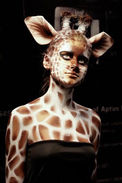 Мои фото Жираф