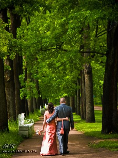 Свадебное фото P6118612.jpg