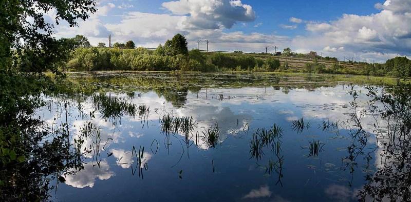 фото альбом Борские озера Озеро-у-дороги_2.jpg