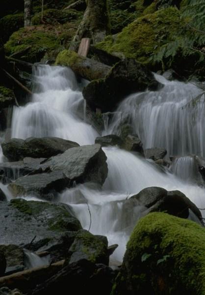 фото альбом Природа Казахстана f_8112773.jpg