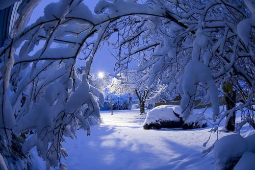 фото альбом Снег 67962555_1292535023_c4d45f1773GUSQPKM_450_505cc6aa88.jpg
