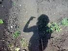 фотографии - 16062007914.jpg - Первый альбом