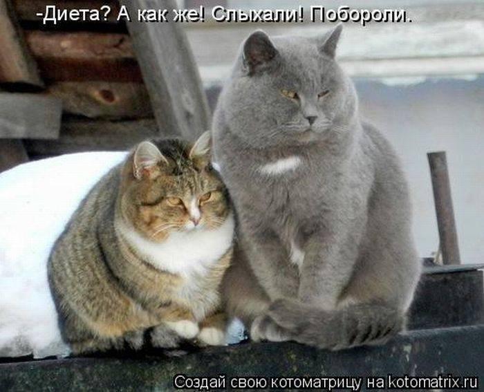 фото альбом Первый альбом 1324917051_-(www.votrube.ru)1.jpg