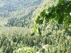 фото - DSC04696.JPG - Абхазия. Экскурсия джиппинг.
